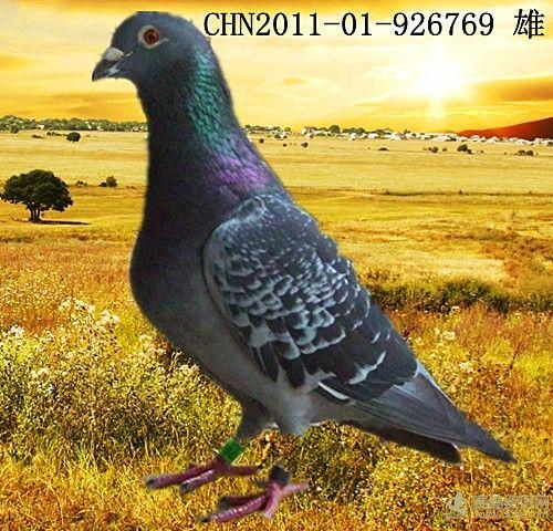 http://image.haojiaolian.com/2012-11/xueche/1353548503248.jpg_