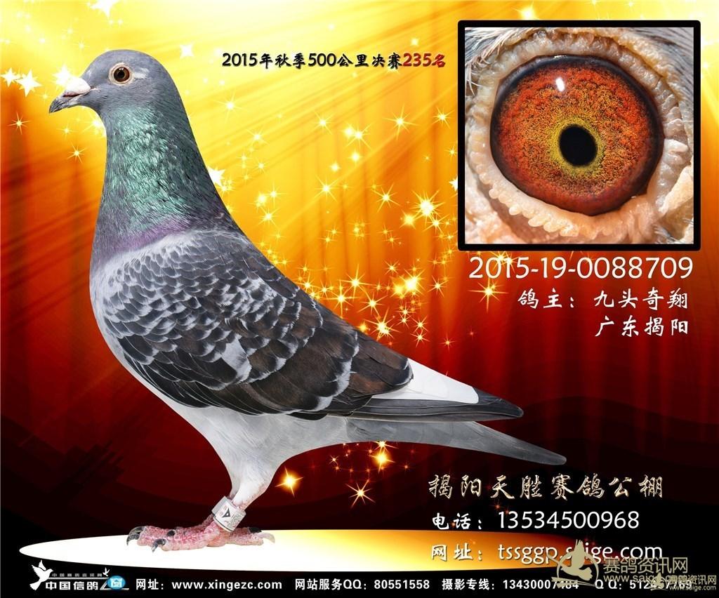 4444bbcom_ce0dfd57-0b69-4444-8c7e-2bb6738776e5