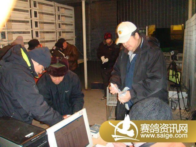 中国 纪实/2011年中国信鸽奥林匹克鸽王争霸赛第三关比赛上笼纪实