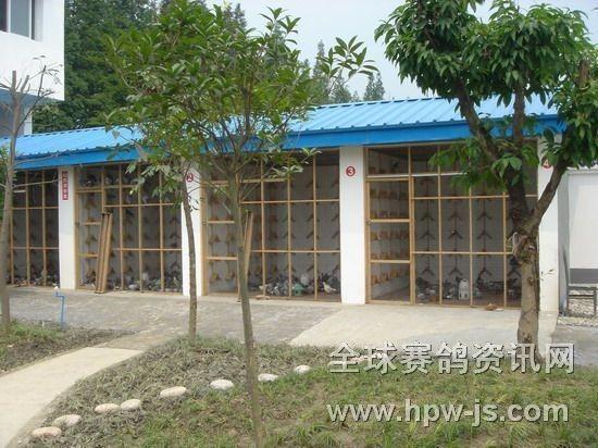 三鑫公棚赛鸽中心经扩建改造后的隔离鸽舍