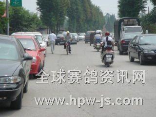 三鑫赛鸽中心门前车水马龙好不热闹