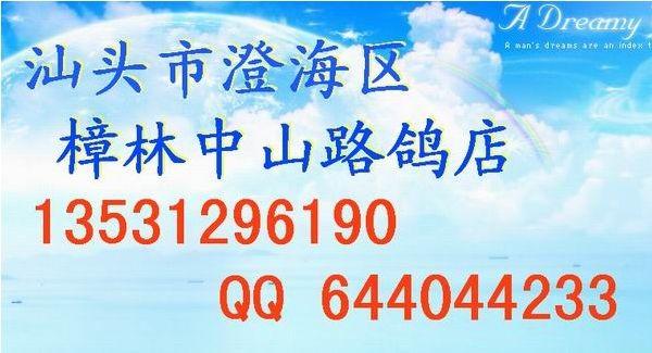 樟林中山路鸽店