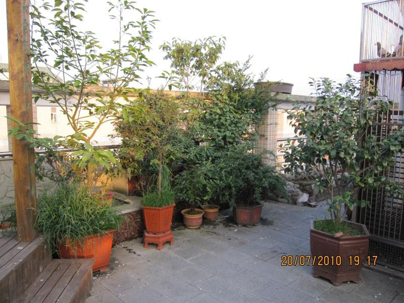 楼顶做花园怎么做 照片图片 楼顶天台花园照片,楼顶做花园