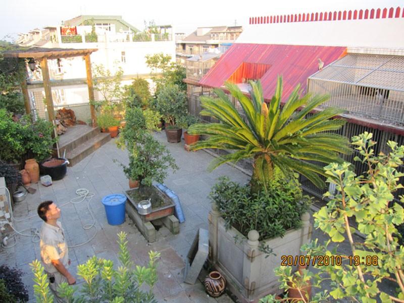 楼顶 花园 及鸽舍 相册 四川红星鸽舍 赛鸽资讯
