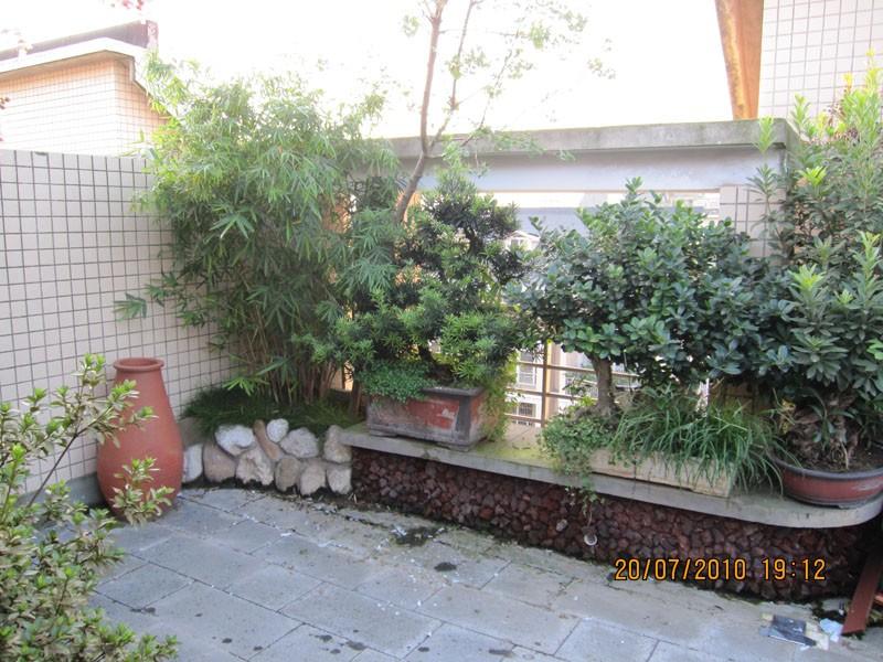 欧式别墅花园设计庭院绿化效果图 设计本装修