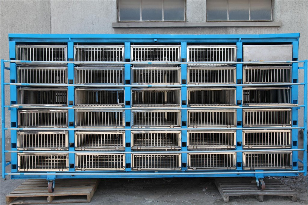宁波市海曙区信鸽协会