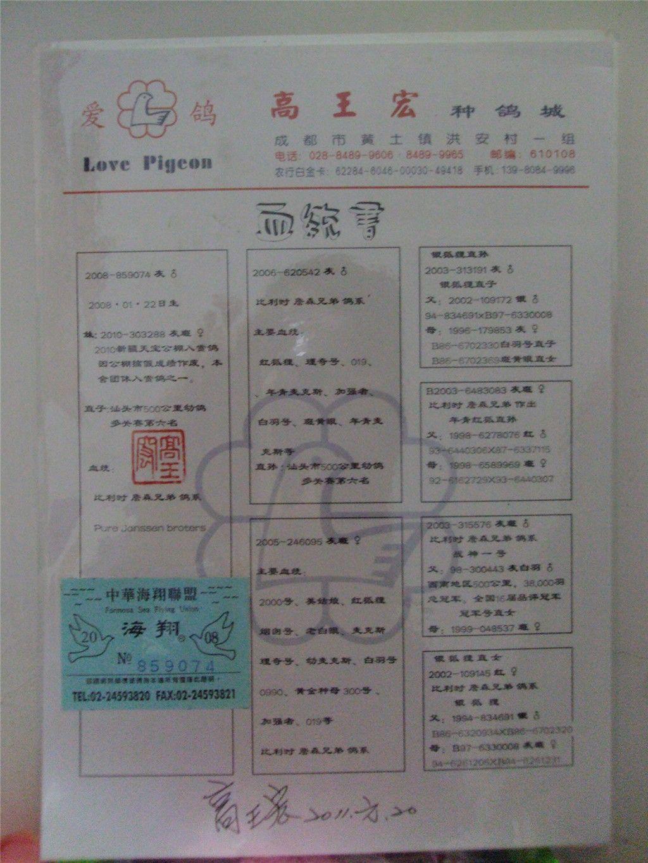 高王宏图片下载