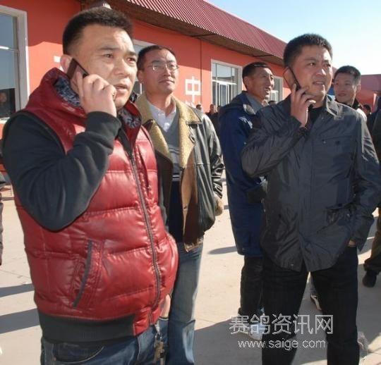 2010年辽宁鸣威公棚决赛第5名,精英赛冠军,由葫芦岛市养鸽名家张树立