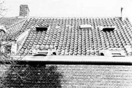 和房子一样,鸽舍设计同样简单实用,每样东西都有自己独特的用处
