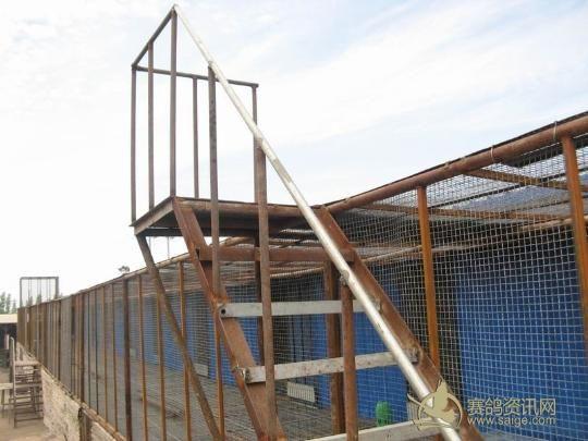 鸽寄养中心——降落台   新疆克拉玛依市共平赛鸽寄养中心——赛鸽舍