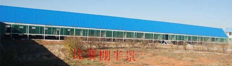 鸣威公棚坐落在辽宁葫芦岛市高桥镇一座小山上,地理位置优越,得天