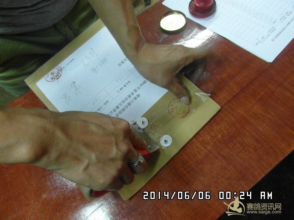 樟林古港信鸽协会2014年夏季莆田站比赛登记表存档