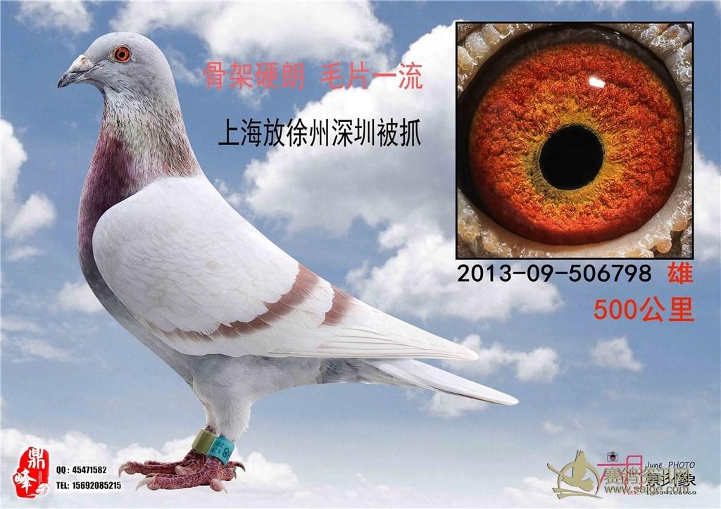 深圳 上海/标签:手机QQ微信15692085215