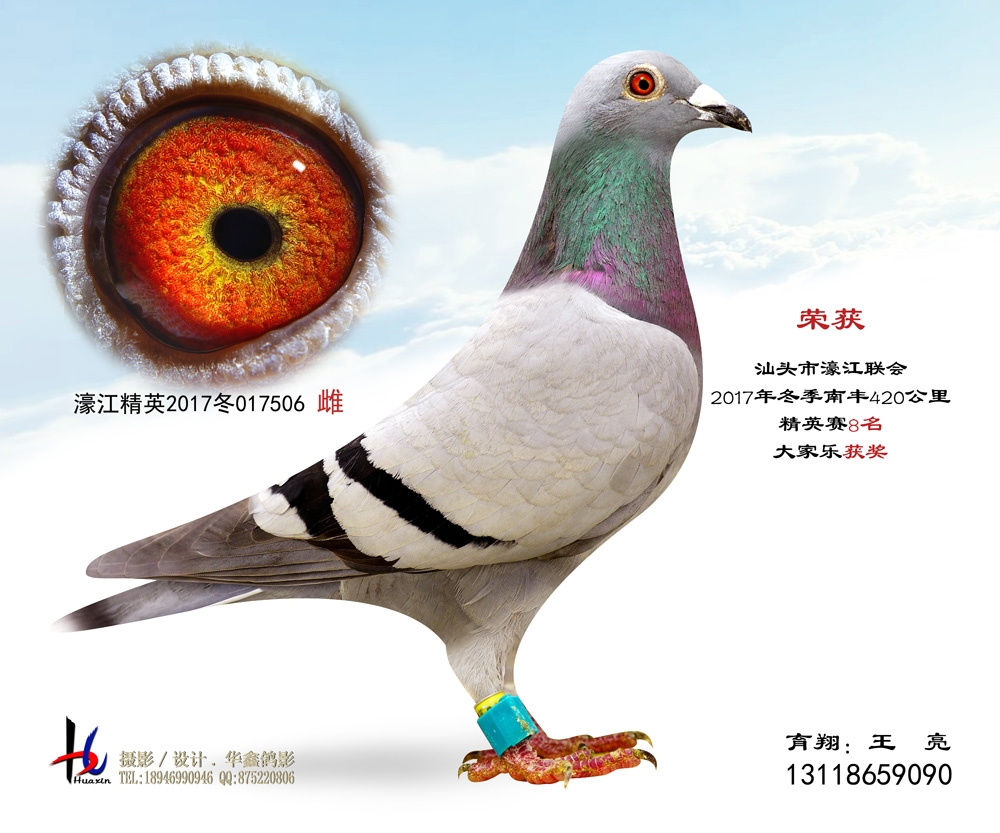濠江联会2017冬季420公里精英赛8名 王亮