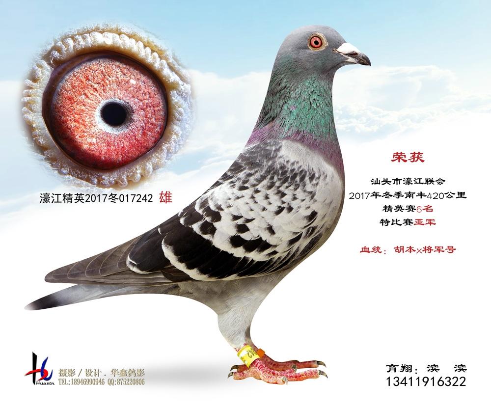 濠江联会2017冬季420公里精英赛6名 滨滨