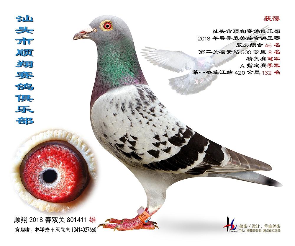 18春福安500公里精英赛冠军 林泽杰 王忠生