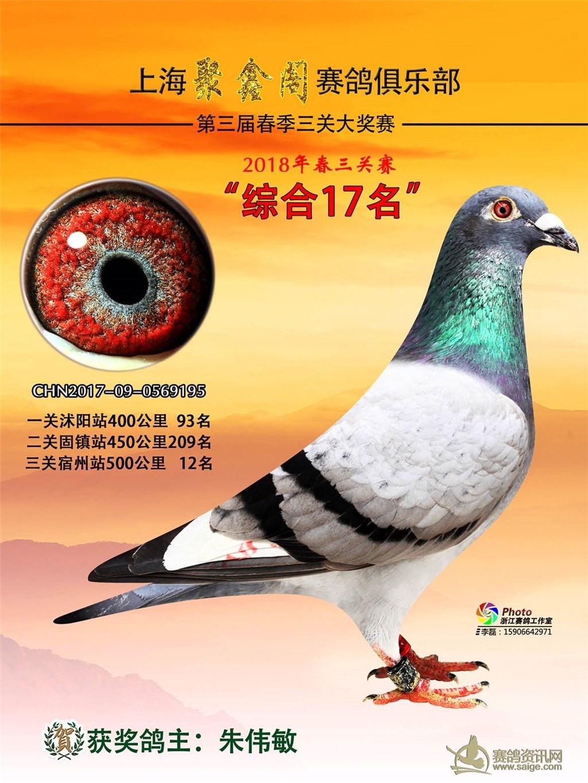 定边县设施农业按照调优结构提升设施助农增效的思路_天津赛鸽网