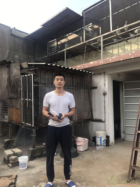 杜沛丰 2018-02-812015 第二关单关冠军 验鸽图片 瑞迪(团队) 2018-0图片