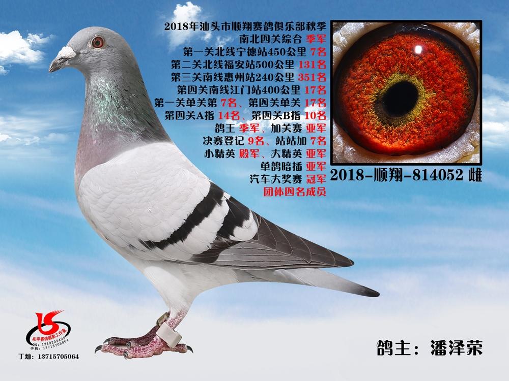 18年秋南北四关综合季军 潘泽荣