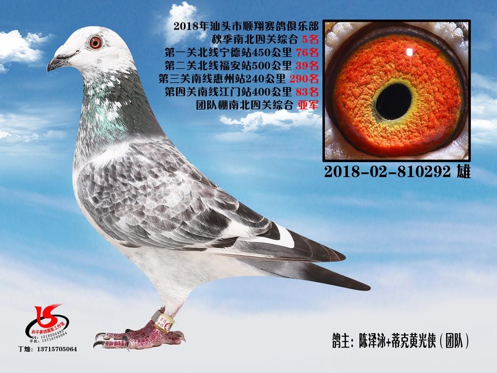 18年秋南北四关综合5名 陈泽泳+蒂克黄光侠(团队)