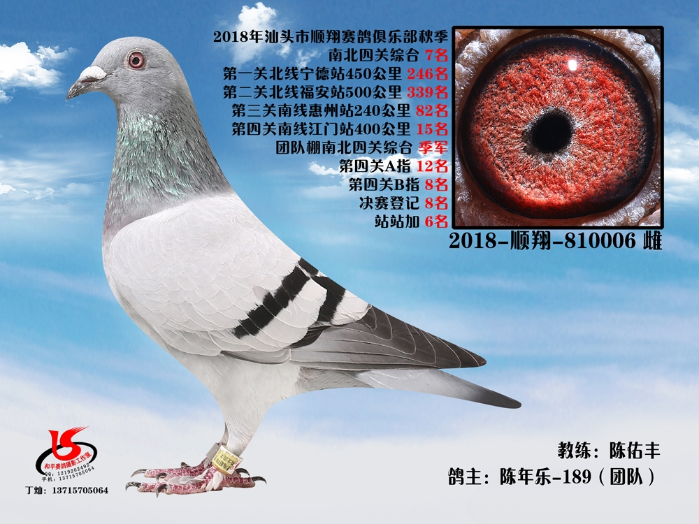 18年秋南北四关综合7名 陈年乐-189(团队) 陈佑丰