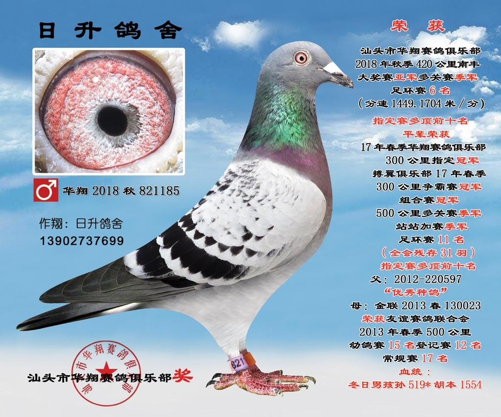 华翔2018秋821185雄6名