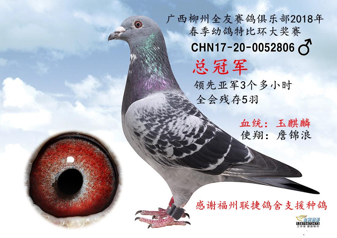 广西柳州总冠军