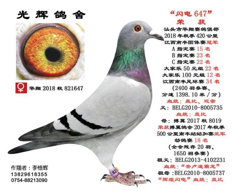 汕头市华翔赛鸽俱乐部18秋420公里江西南丰团体赛冠军