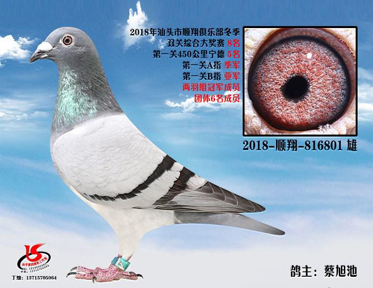 18年冬季双关综合第八名 蔡旭池
