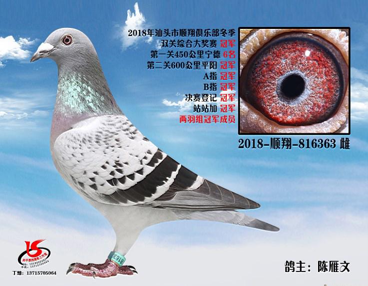 18年冬季双关综合冠军 陈雁文