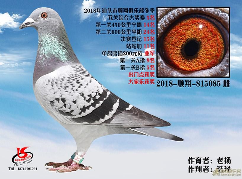 18年冬季双关综合第五名 浩泽 老扬