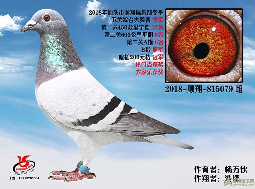 18年冬季双关综合季军 浩泽 杨万钦
