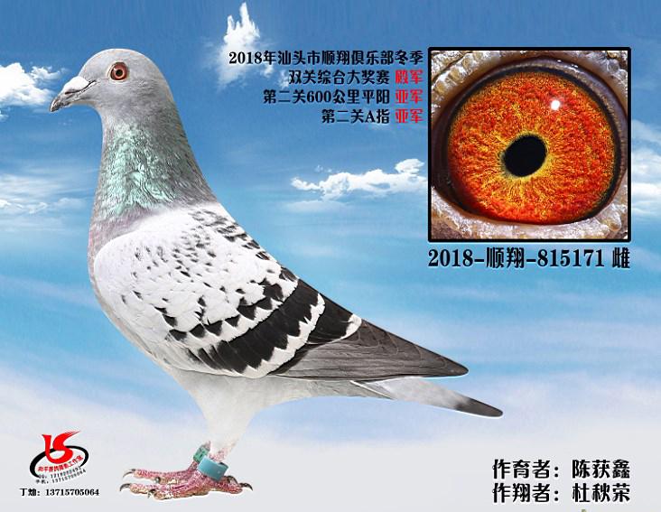 18年冬季双关综合殿军 杜秋荣 陈获鑫