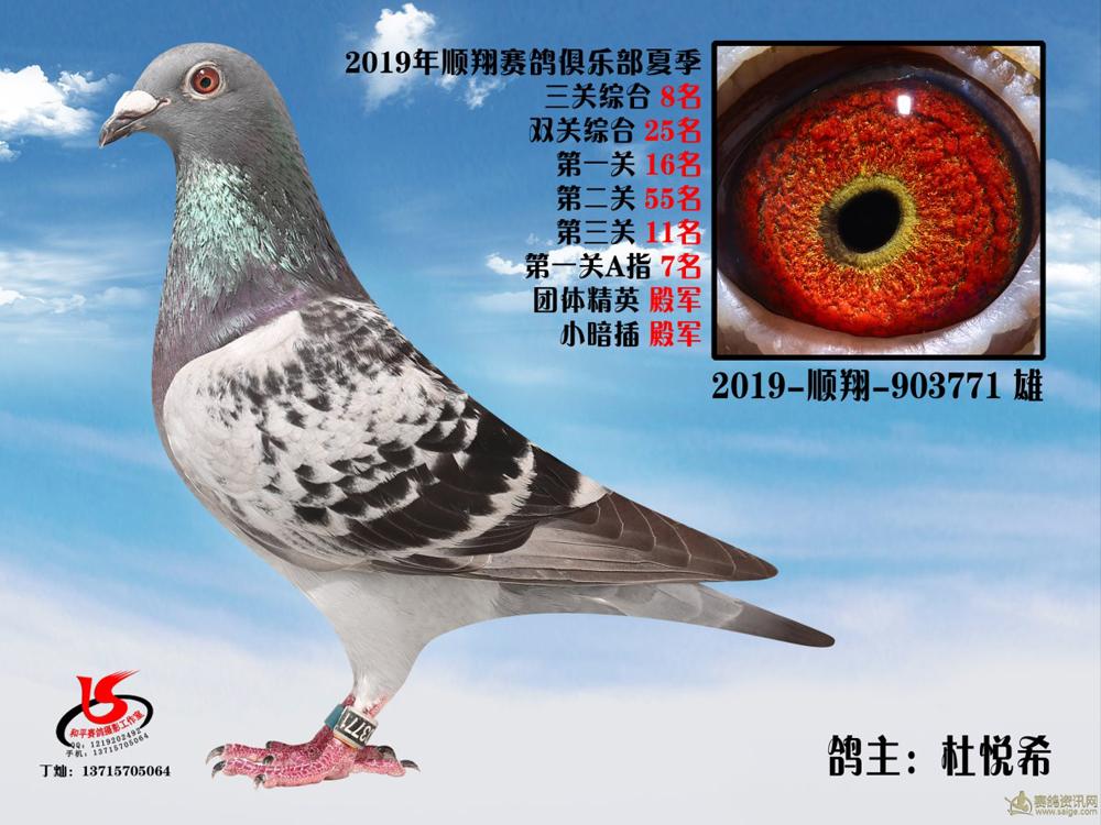 19年夏季大奖赛三关综合8名 杜悦希