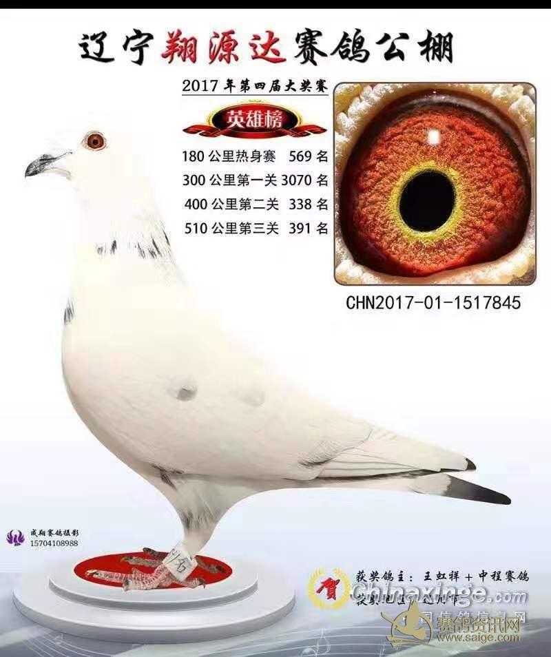 國際陸運FCFC24F-247993636