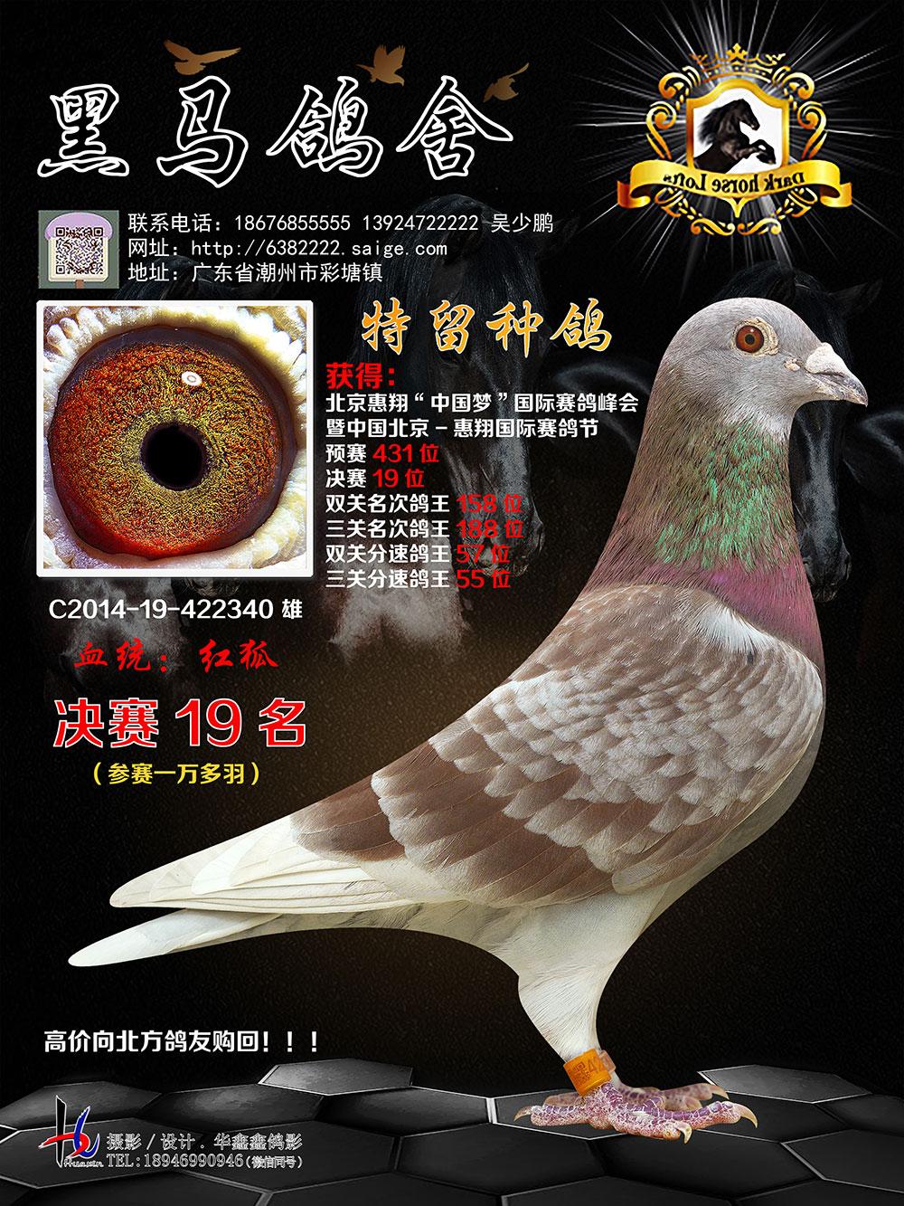 惠翔���H�����Q�19名 14-422340