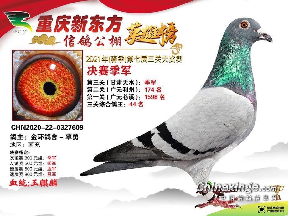 重庆新东方公棚决赛季军