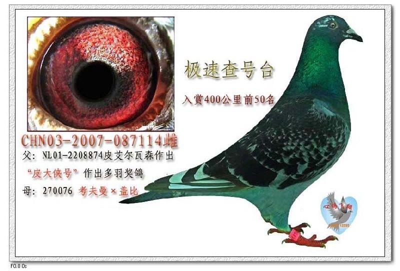 综艺资讯-有负面新闻的明星中文文化-中国日报网资讯网
