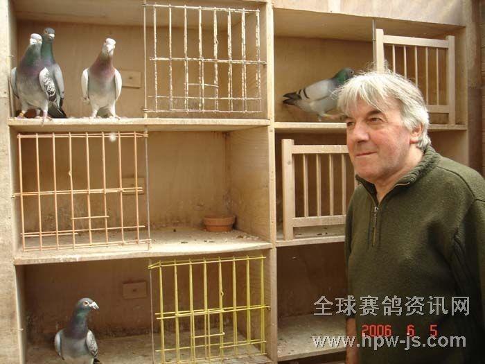赛鸽鸽舍图片_赛鸽鸽舍建造图片,比利时赛鸽鸽舍图片图片